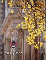 PDF of the Graduate Catalog of Studies (2.6 MB)