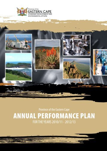 ANNUAL PERFORMANCE PLAN - Dedea