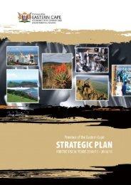 Strategic Plan 2010-2015 - Dedea