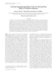 Naturally Segregating Quantitative Trait Loci Affecting ... - Genetics