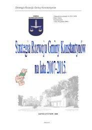 Strategia Rozwoju Gminy Konstantynów - Lublin