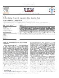 Perfect timing: Epigenetic regulation of the circadian clock