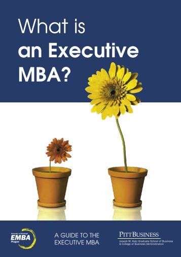 What is an Executive MBA? - Expats.cz