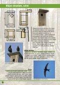 Būrīši zīlītēm, mušķērājiem, baltajai cielavai, mājas strazdam, svīrei ... - Page 4