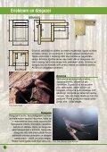 Būrīši zīlītēm, mušķērājiem, baltajai cielavai, mājas strazdam, svīrei ... - Page 6