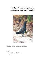 Mednis (Tetrao urogallus) - Dabas aizsardzības pārvalde
