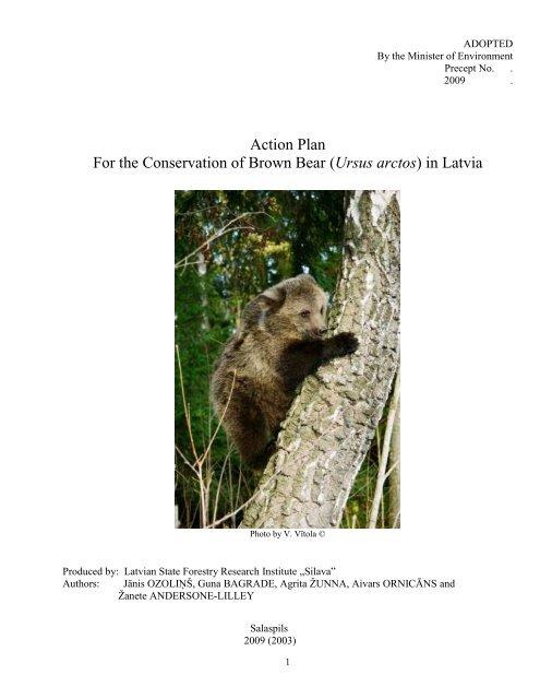 Brown bear Ursus arctos - Dabas aizsardzības pārvalde