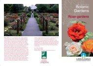 Rose Gardens - Christchurch Botanic Gardens