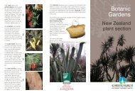 NZ Plant Section - Christchurch Botanic Gardens