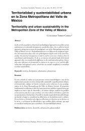Territorialidad y sustentabilidad urbana en la Zona Metropolitana ...