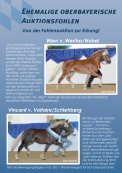 Auktionsfohlen - Pferdezuchtverband Oberbayern eV - Seite 2
