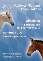 Auktionsfohlen - Pferdezuchtverband Oberbayern eV