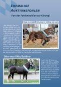 Kaltblut - Pferdezuchtverband Oberbayern eV - Seite 2