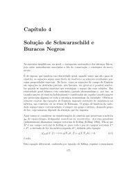 Solução de Schawarzschild e Buracos Negros