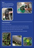 Effective Caltrop (Puncture Vine) Removal - City of Stirling - Page 2