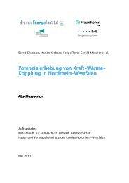 PDF (Endbericht) - Bremer Energie Institut