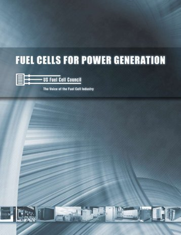 Fuel Cells for Power Generation - 2008 - National Hydrogen ...