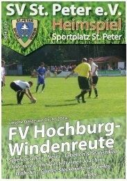 SVS-Heimspiel 2014/15-03