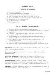 Info - Bozita mit Rentier - als PDF
