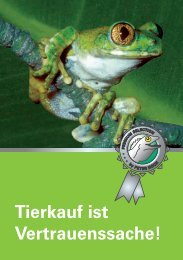 Tierkauf ist Vertrauenssache! - Lucky Reptile