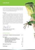 Tierkauf ist Vertrauenssache! - Lucky Reptile - Page 3