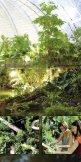 Tropical Islands - ADAC Camping-Caravaning-Führer - Seite 7