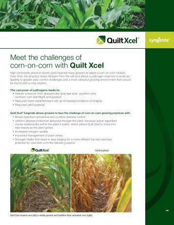 Quilt Xcel and Corn-On-Corn 2013 - Schertz Aerial Service, Inc.