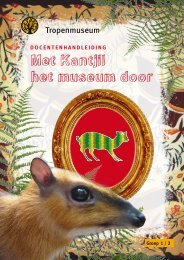 docentenhandleiding - Tropenmuseum