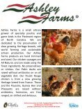 Poultry - Sysco - Page 4