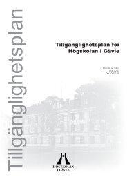 Tillgänglighetsplan för Högskolan i Gävle