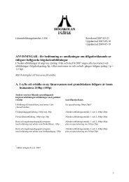 ANVISNINGAR - för bedömning av ansökningar om ...