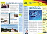 Europawahl 2009 - FDP Niedersachsen