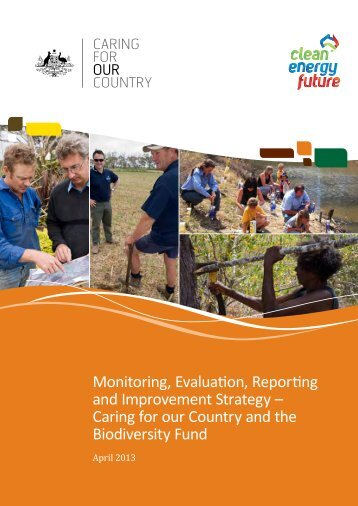 Monitoring, Evaluation, Reporting and Improvement Strategy