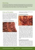Leaflet - Worm Control and Worming - British Horse Society - Page 2