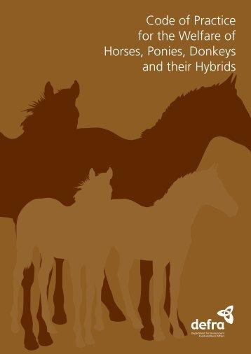 Code of Practice for the Welfare of Horses, Ponies, Donkeys - Gov.uk