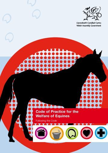 Code of Practice for the Welfare of Equines
