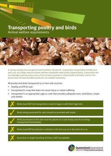 Transporting poultry and birds - Department of Primary Industries