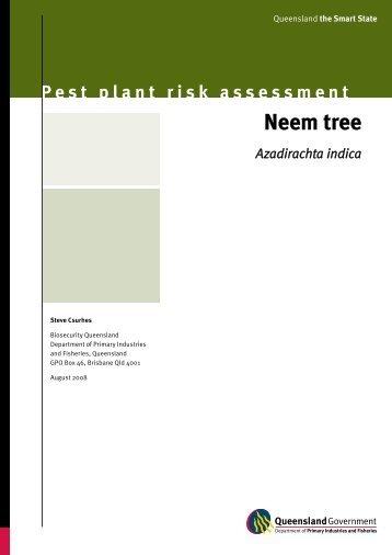 Pest plant risk assessment:Neem tree—Azadirachta indica