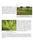 Goldenrod Management in Wild Blueberry - Perennia - Page 2