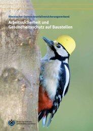 Arbeitssicherheit und Gesundheitsschutz auf ... - beim Bistum Mainz