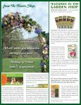 Citrus in Containers - Orchard Nursery - Page 2