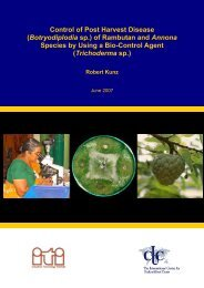 Botryodiplodia sp. - Crops for the Future