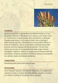QUINOA - Crops for the Future - Page 5