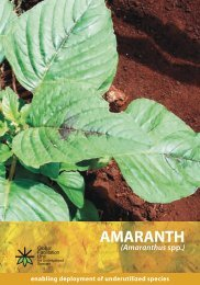 What is Amaranth and where does it come - Crops for the Future