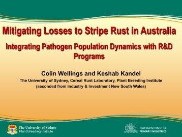 Mitigating Losses to Stripe Rust in Australia Integrating Pathogen ...