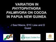 variation in phytophthora palmivora on cocoa in papua new guinea