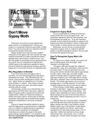 Don't Move Gypsy Moth - Invasive.org
