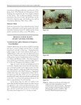 5 WATERLETTUCE PEST STATUS OF WEED ... - Invasive Plants - Page 6
