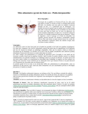 Mites alimentaires (pyrale des fruits secs - Plodia interpunctella)