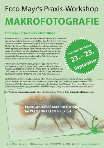 MAKROFOTOGRAFIE